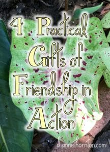 Friendship is a gift. Often we don't recognize the gifts that accompany it until we are in a crisis. Here are 4 practical gifts of friendship in action.