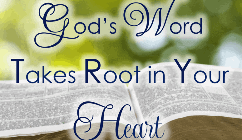 When God's Word Takes Root In Your Heart