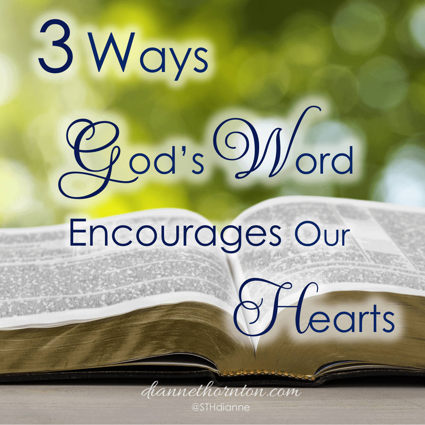 When we are frustrated and disappointed, when our hearts are weary, when we need direction, God's Word encourages our hearts with strength, hope, and joy.