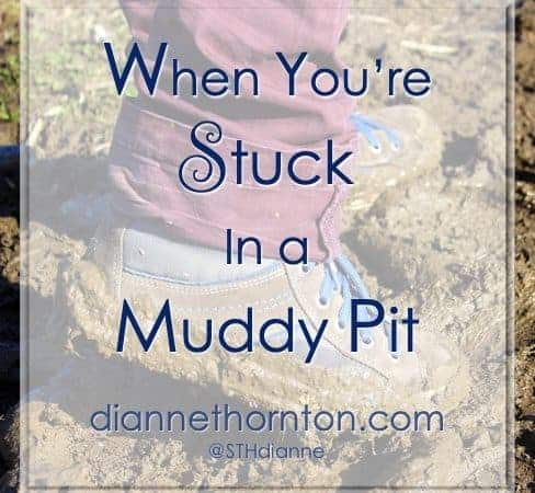When You're Stuck In A Muddy Pit